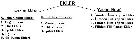 https://www.bilgicik.com/resimler/ekler_ve_sozcuk_yapisi.PNG