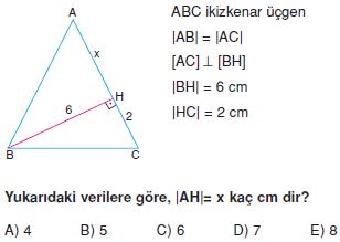 Dik Ucgen_Konu_Testi_VIII_002