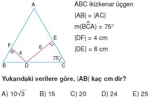 Dik Ucgen_Konu_Testi_VIII_009