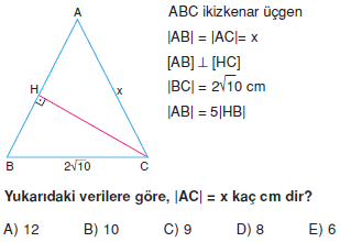 Dik Ucgen_Konu_Testi_VIII_010
