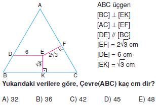 Dik_Ucgen_Konu_Testi_X_004