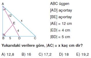 aciortay_kenarortay _konu_testi_6_004