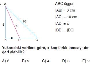 aciortay_kenarortay _konu_testi_9_013