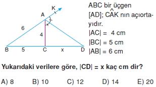 aciortay_kenarortay_cozumlu_test_II_010