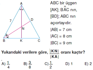 aciortay_kenarortay_cozumlu_test_II_014