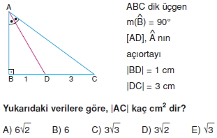 aciortay_kenarortay_cozumlu_test_I_001