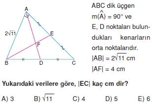 aciortay_kenarortay_cozumlu_test_I_012