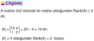 bir-matrisin-ranki_004