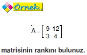 bir-matrisin-ranki_005