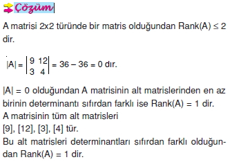 bir-matrisin-ranki_006