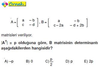 determinantin_ozellikleri_026