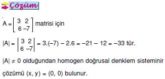 homogen-dogrusal-lineer-denklem-sistemleri_003