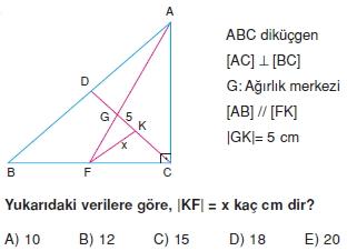 aciortay_kenarortay _konu_testi_11_013