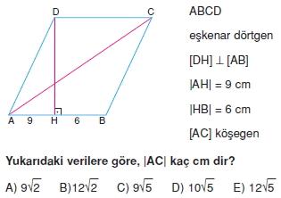 paralel_kenar_dortgen_test_10_003
