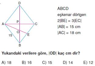 paralel_kenar_dortgen_test_10_013