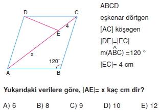 paralel_kenar_dortgen_test_8_009