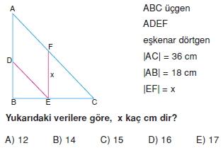 paralel_kenar_dortgen_test_9_005