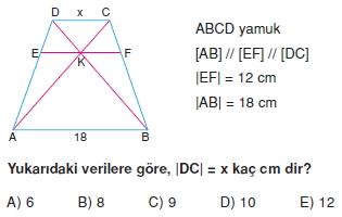 yamuk_test_3_009