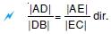 temel-oranti-teoremi002