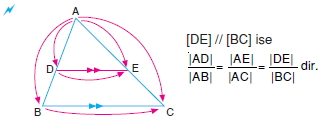 temel-oranti-teoremi003