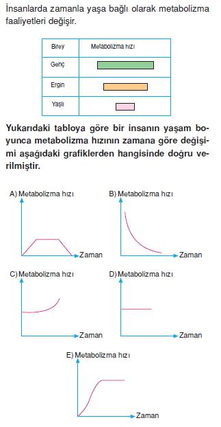Canlilarintemelbilesimicozumlutest1 (5)