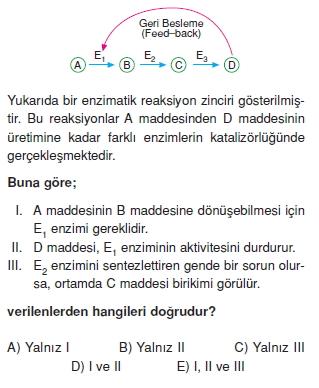Canlilarintemelbilesimicozumlutest1 (9)
