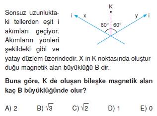 Magnetizma test 3004