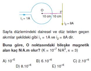 Magnetizma test 3006