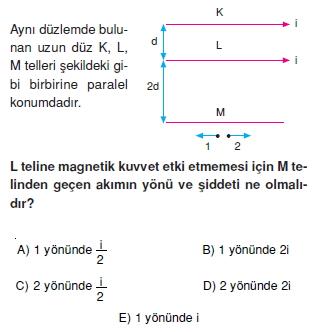 Magnetizma test 3007