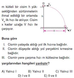 yeryuzundeharekettest2008