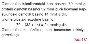 Bosaltimsistemicözümler2006