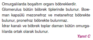 Bosaltimsistemicözümler1004