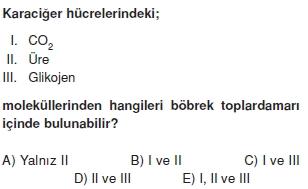 Bosaltimsistemikonutesti1003