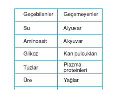 Bosaltimsistemikonutesti3005