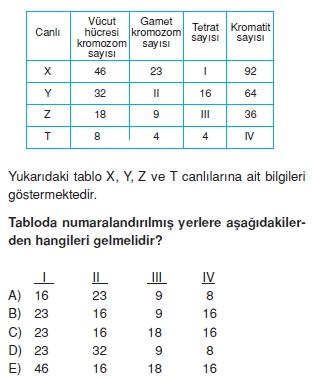Canlilarintemelbilesimicozumlutest1 (17)