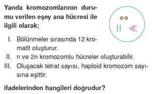 Canlilarintemelbilesimicozumlutest1 (4)