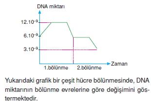 Canlilarintemelbilesimicozumlutest1 (6)