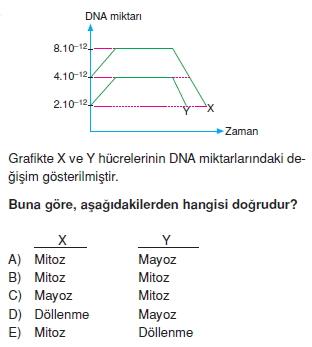 Canlilarintemelbilesimicozumlutest1 (7)
