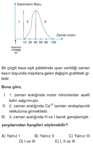 Destekvehareketsistemikonutesti3002