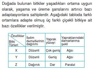Dokularcözümlütest1003