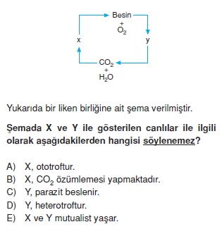 Ekolojikonutesti2001