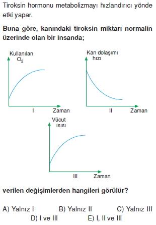 Endokrinsistemcözümlütest2003