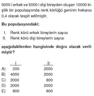 Kalitimcözümlütest1010