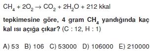Kimyasaltepkimelerdeenerjicözümlütest2004