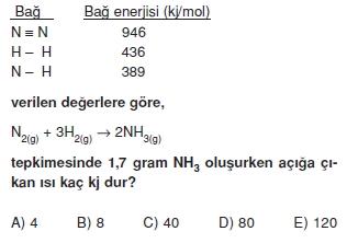 Kimyasaltepkimelerdeenerjikonutesti2007
