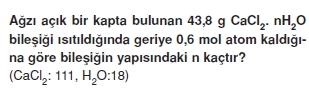 Molkavramikonutesti3002