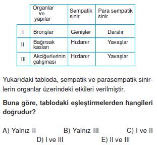 Sinirsistemikonutesti3001