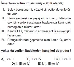Solunumsistemicözümlütest2004