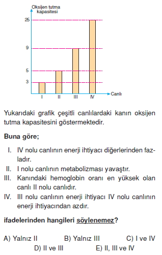 Solunumsistemicözümlütest2002