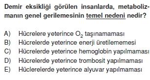 Solunumsistemikonutesti1003
